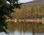 Podzimní rybářské závody 2020 (19)