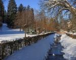 Leden v Luhačovicích 18.1.21 (1)