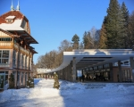 Leden v Luhačovicích 18.1.21 (15)