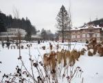 Lázně Luhačovice zima 2019  (6)