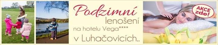 Hotel Vega Zima