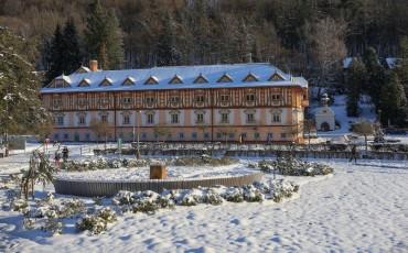 Leden v Luhačovicích 18.1.21 (9)